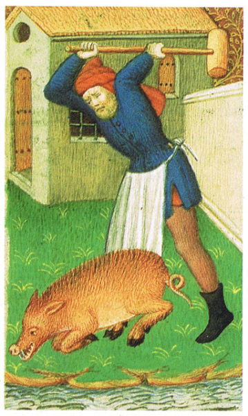 Not us either... Illustration of medieval pig stunning, from The Medieval Cookbook